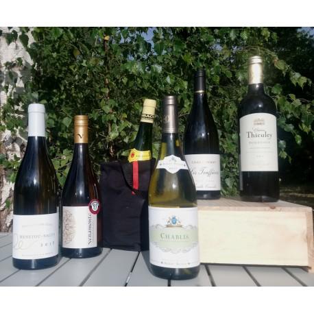 Dry White Wines - 6 bottles selection + fresh baladeur free
